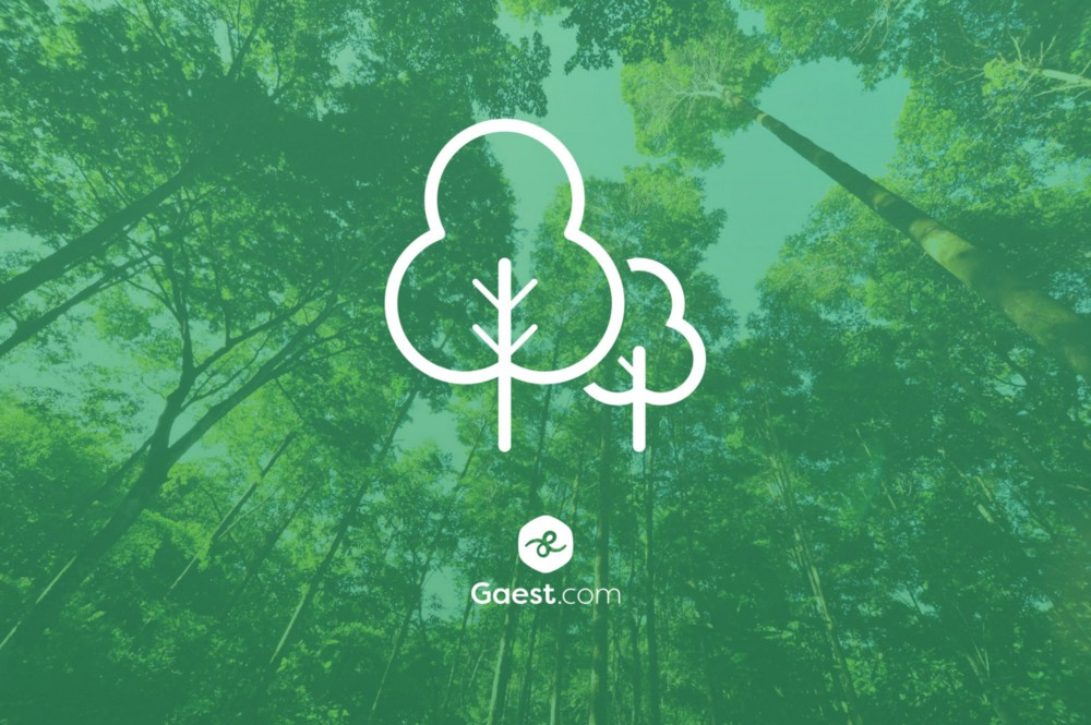 Gaest.com partners with CTX to go green 🌱